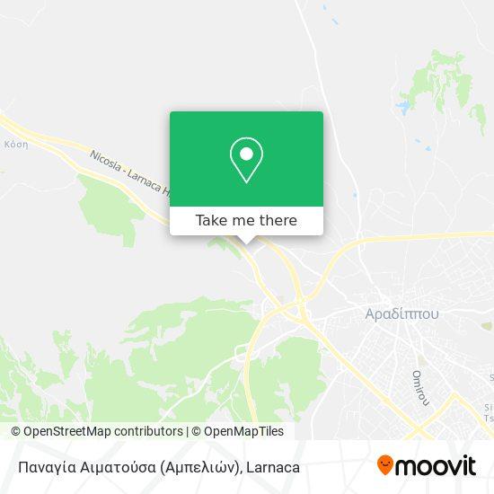 Παναγία Αιματούσα (Αμπελιών) χάρτης