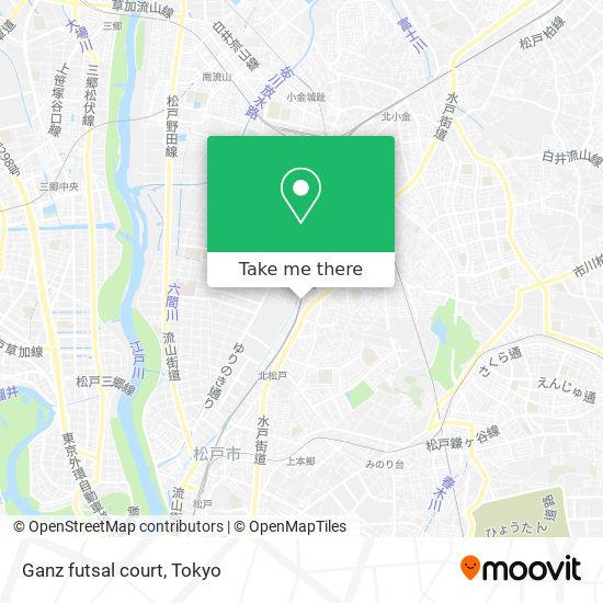 Ganz futsal court map