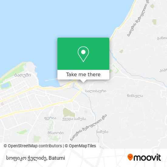 სოფიკო ჭელიძე map