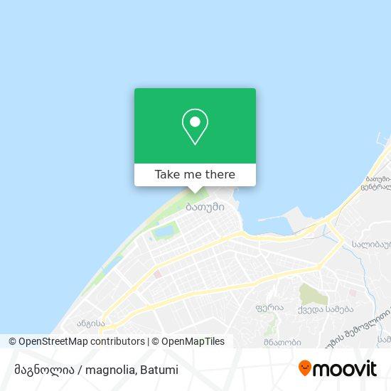 მაგნოლია / magnolia map