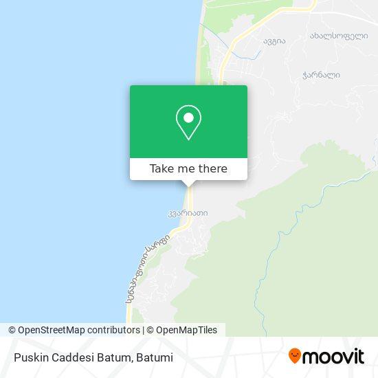 Puskin Caddesi Batum map