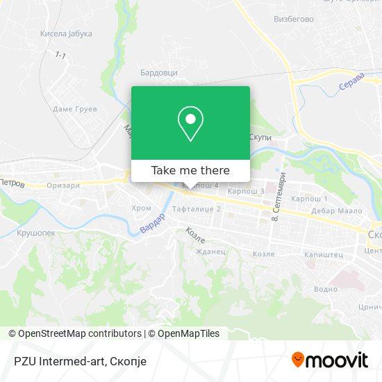 PZU Intermed-art map