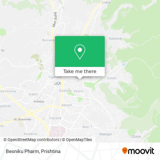 Besniku Pharm map