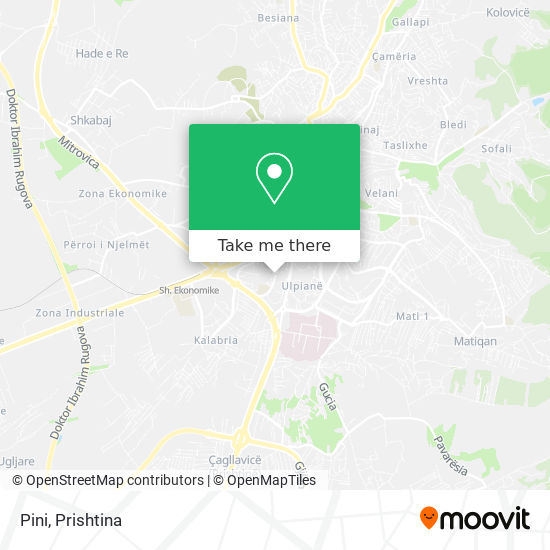 Pini map