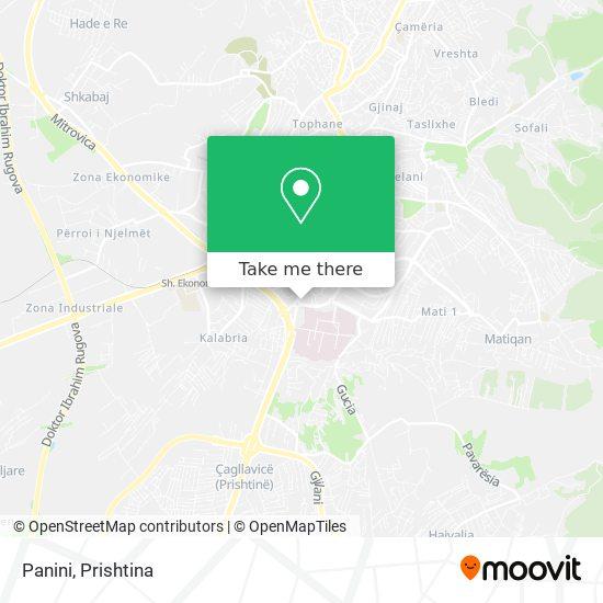 Panini map