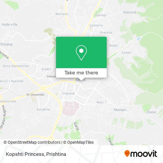 Kopshti Princess map