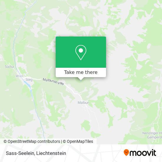 Sass-Seelein map
