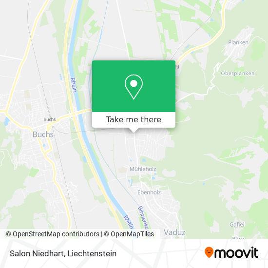 Salon Niedhart map