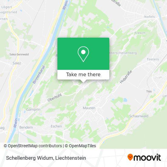 Schellenberg Widum map