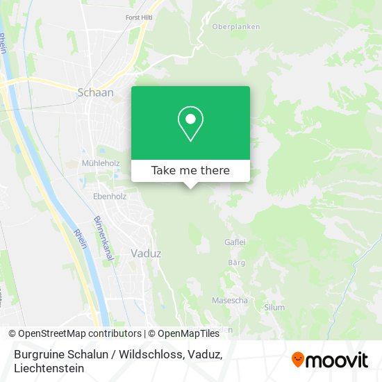 Burgruine Schalun / Wildschloss, Vaduz map
