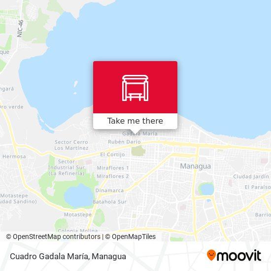 Cuadro Gadala María map