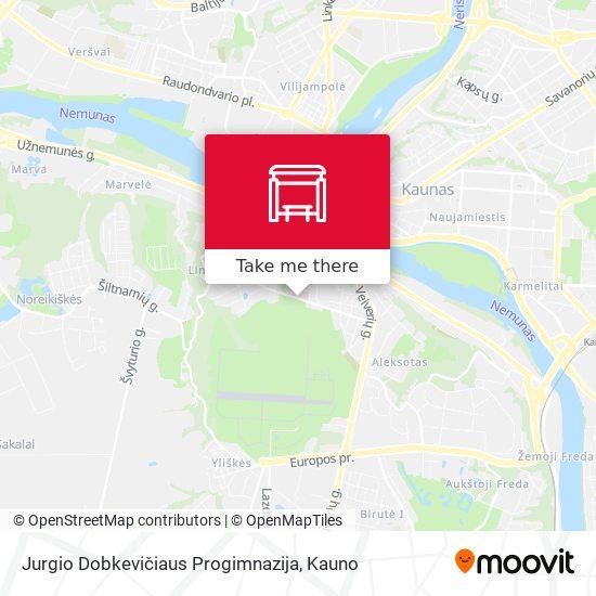 Jurgio Dobkevičiaus Progimnazija map