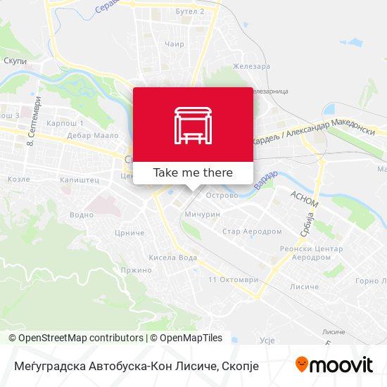 Меѓуградска Автобуска-Кон Лисиче map