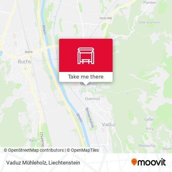 Vaduz Mühleholz map