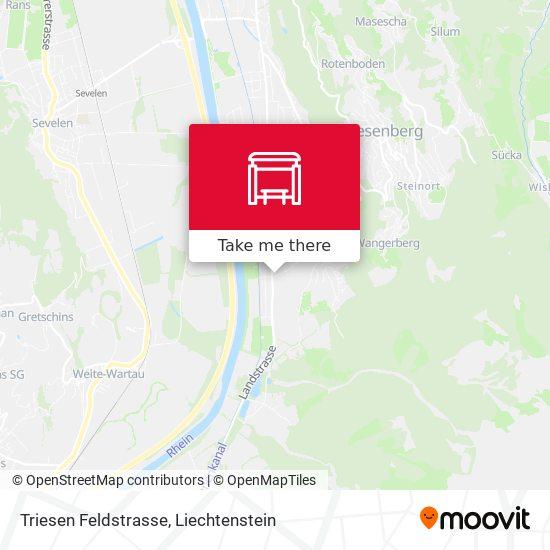 Triesen Feldstrasse map