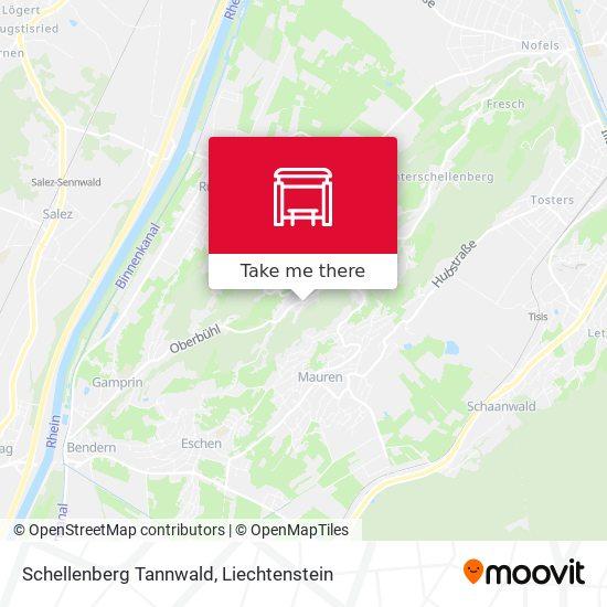 Schellenberg Tannwald map