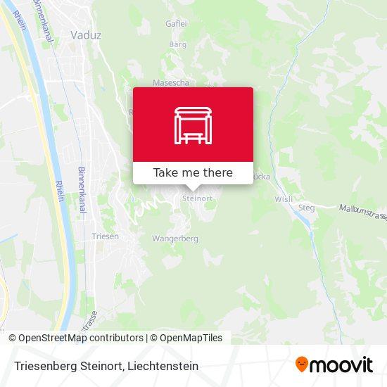 Triesenberg Steinort map