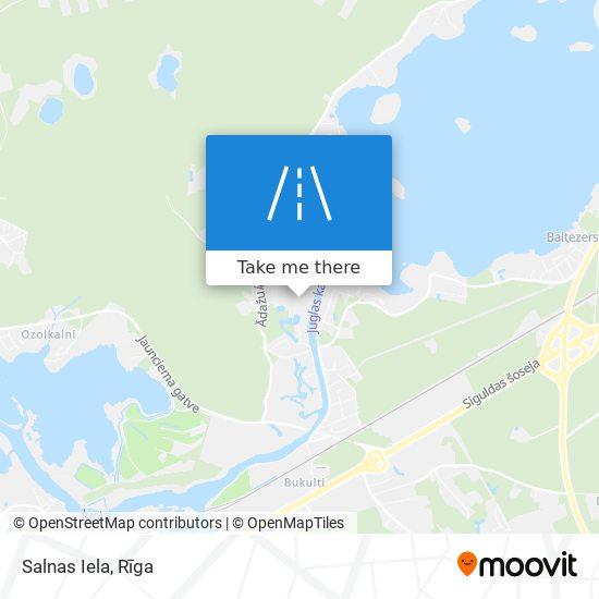 Salnas Iela map