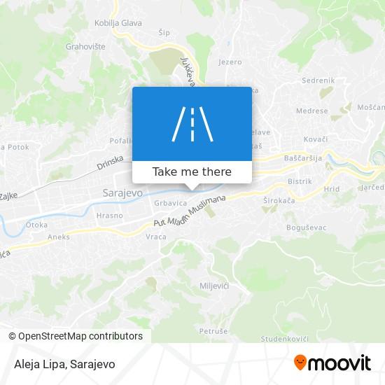 Aleja Lipa map