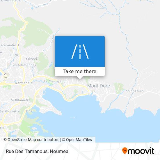 Rue Des Tamanous map