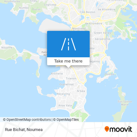 Rue Bichat map