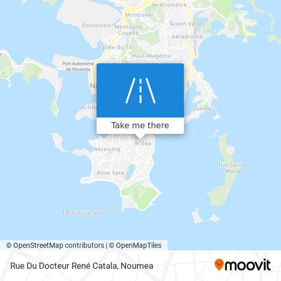 Rue Du Docteur René Catala map