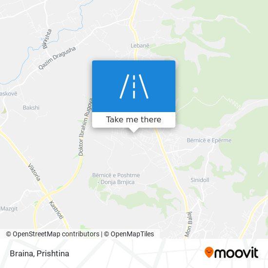 Braina map