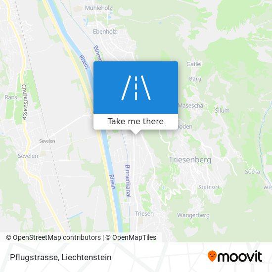 Pflugstrasse map