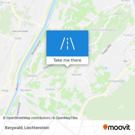 Bergwald map