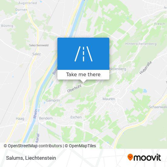Salums map