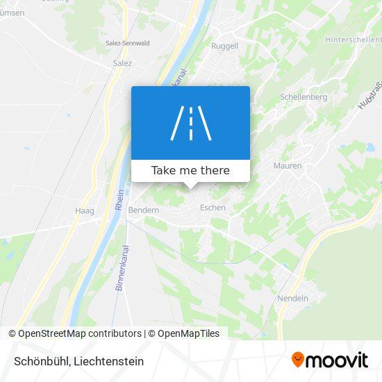 Schönbühl map
