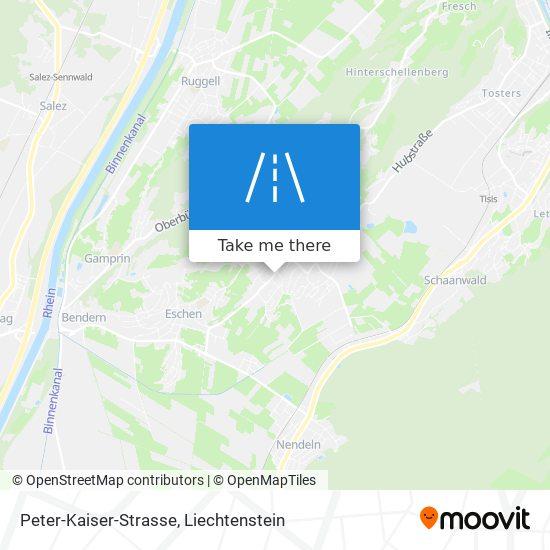 Peter-Kaiser-Strasse map