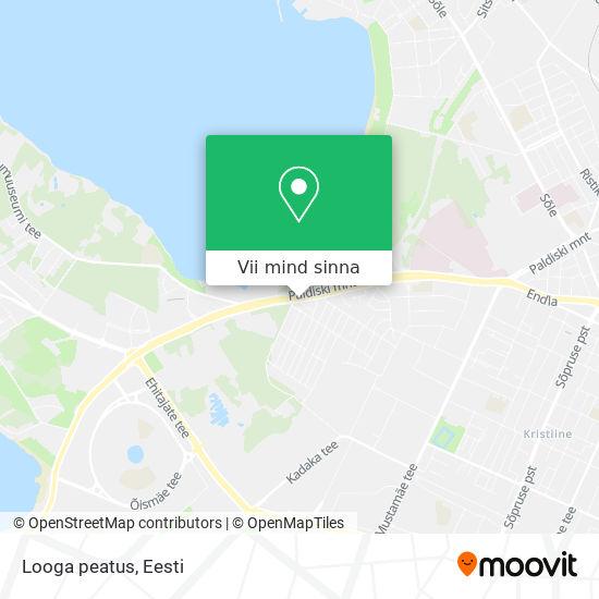 Looga peatus kaart