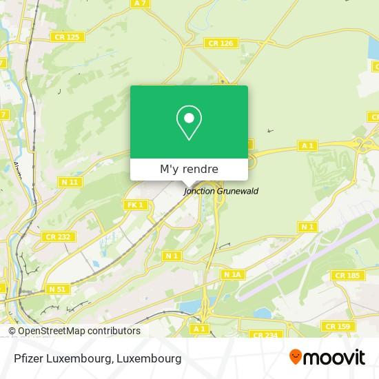 Pfizer Luxembourg plan