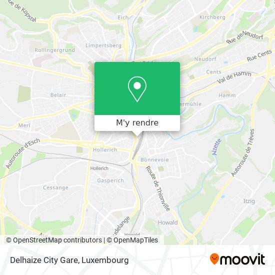 Delhaize City Gare plan