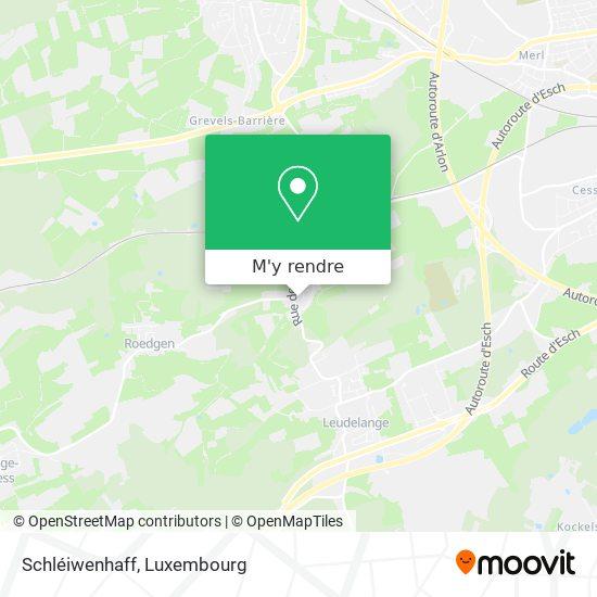 Schléiwenhaff plan