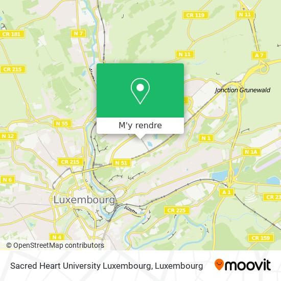 Sacred Heart University Luxembourg plan