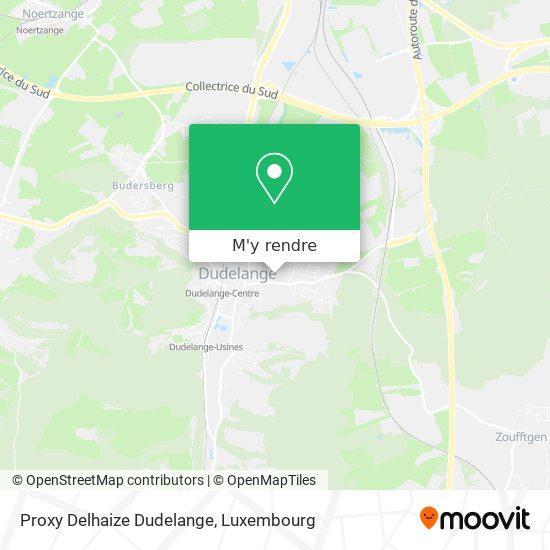 Proxy Delhaize Dudelange plan