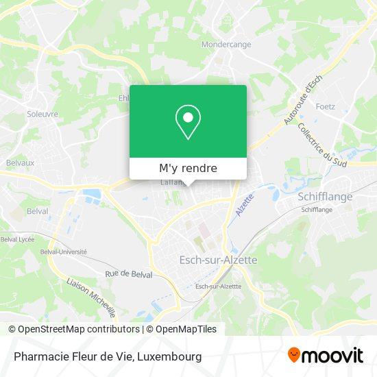 Pharmacie Fleur de Vie plan