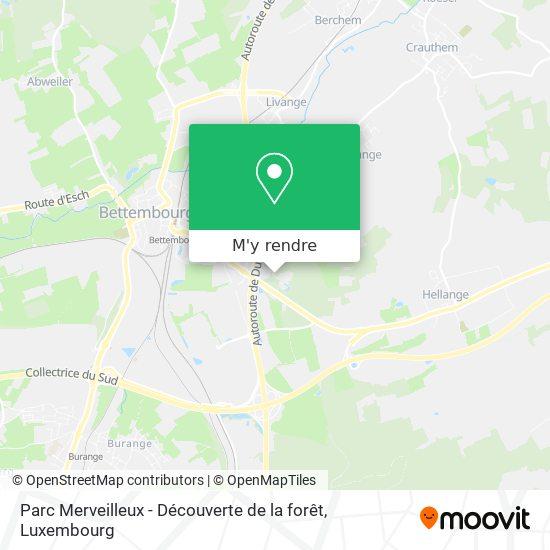 Parc Merveilleux - Découverte de la forêt plan