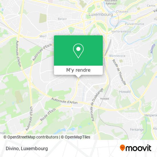 Divino, Rue Friedrich Wilhelm Raiffeisen 2411 Luxembourg plan