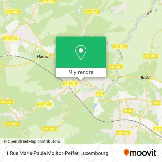 1 Rue Marie-Paule Molitor-Peffer plan