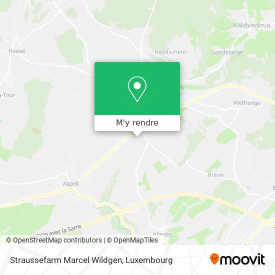 Straussefarm Marcel Wildgen plan