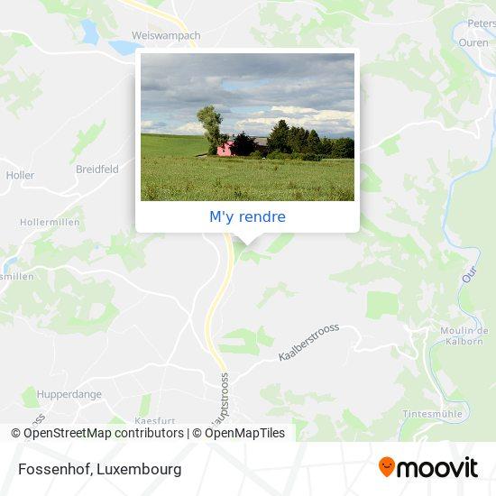 Fossenhof plan