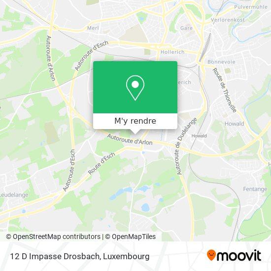 12 D Impasse Drosbach plan
