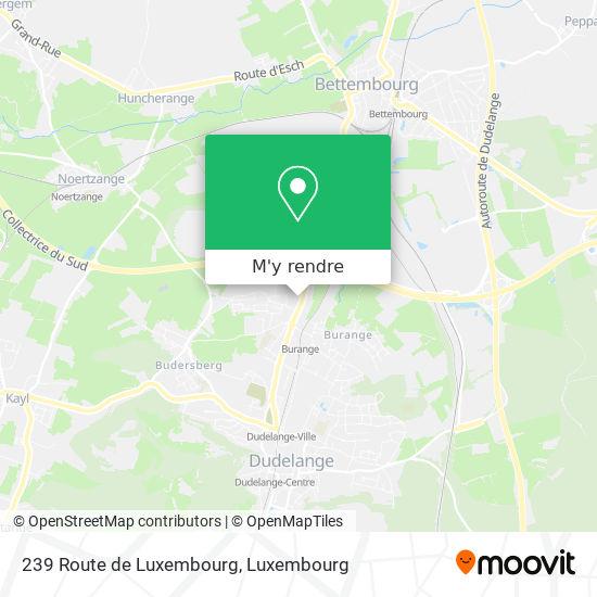 239 Route de Luxembourg plan