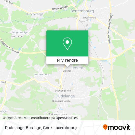 Dudelange-Burange, Gare plan