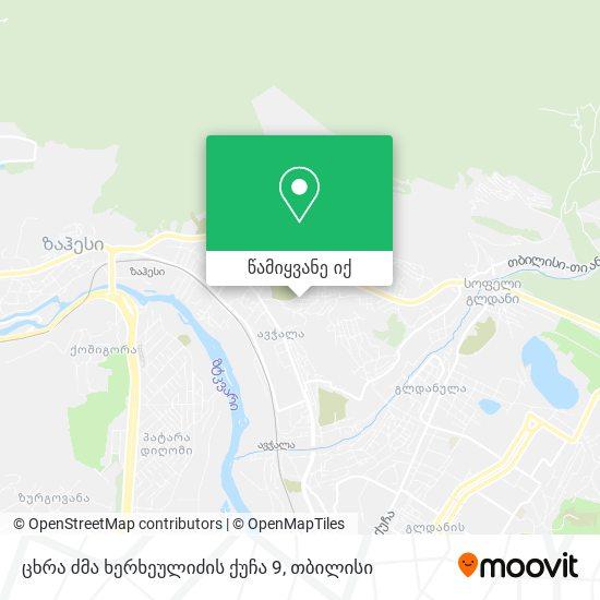 ცხრა ძმა ხერხეულიძის ქუჩა 9 რუკა
