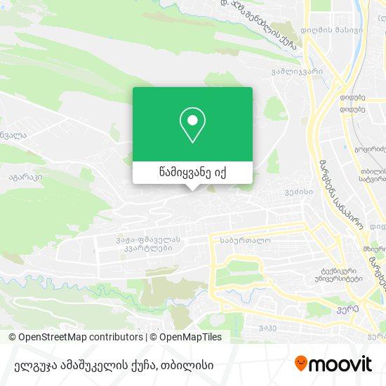 ელგუჯა ამაშუკელის ქუჩა რუკა