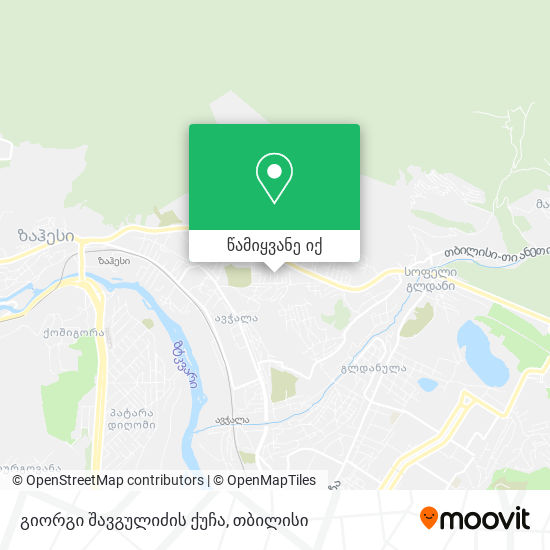 გიორგი შავგულიძის ქუჩა რუკა